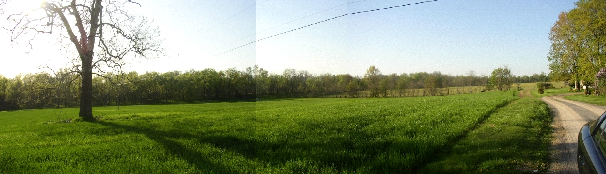 West Panorama from Ambler Road